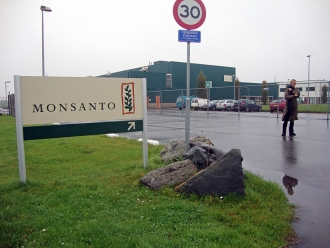 Monsanto Q4 Losses Worse Than Expected, Announces $930 Million Acquisition